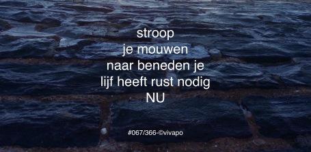 #067:366-©vivapo