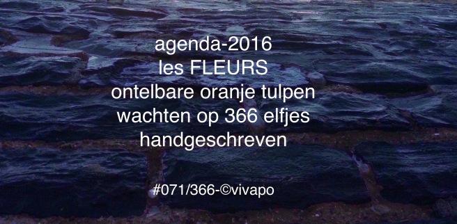 #071:366-©vivapo