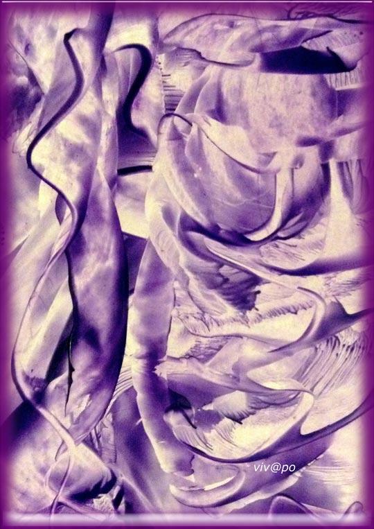 dansen paars