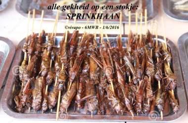 de-sprinkhaan-van-de-barbecue-13207954