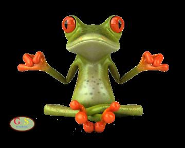 Meditatie-Kikker
